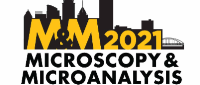 M&M 2021 Virtual